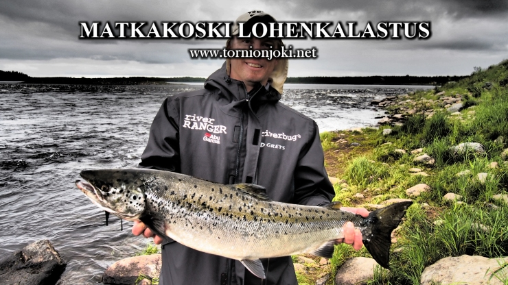 Tornionjoki or Tornio River in Finland / Sweden have been a good testing ground for RiverBug tube fly method, that´s design and tested on these rough waters. #flytying #tubefly #putkiperhot #perhonsidonta #spinfluga #tubluga #riverbug #lohi #salmon #salmonfishing #finnlures #campbellriversalmon #kuningaslohi #chinook #matkakoski #tornionjoki #saumon #laks #lachs #perhokalastus #tornionjoki #vuennonkoski #tubenfliegen #tubeflue #spinfluga #tornionjokinet #fishingguide #lapland #visittornio